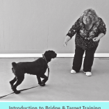 Kayce Cover's Bridge and Target Training Manual