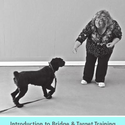 Kayce Cover's Bridge and Target Training Manual