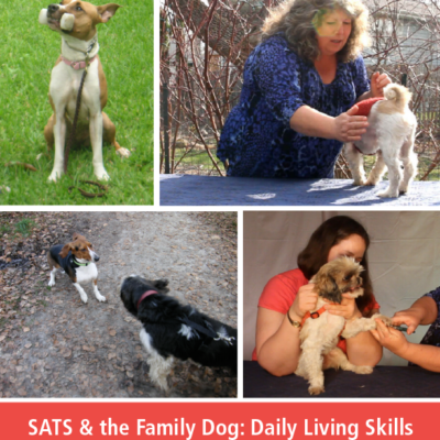 SATS & the Family Dog: Daily LIving Skills